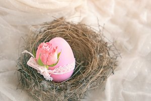 pink egg and flower roses in nest