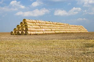 haystacks straw. field