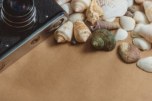 frame of seashells and photo camera on light background with copyspace