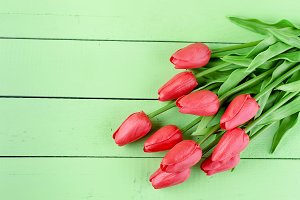 Bouquet of spring red tulips