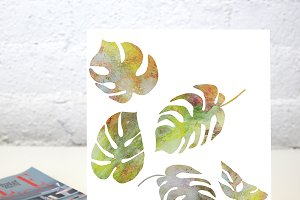 Monstera watercolor leaves