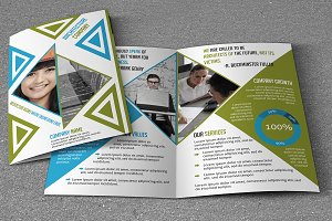Business Brochure V789