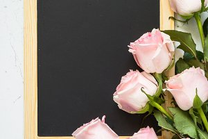 Pink rose flower and chalkboard