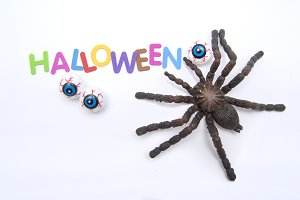 Tarantula and halloween eyes.