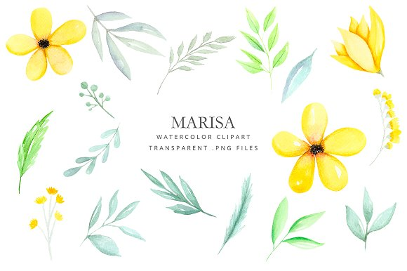 Clipart Watercolor Yellow Flowers Illustrations Creative Market