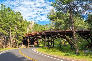 Bridge in Custer State Park