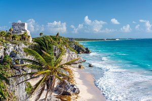 Tulum Ruins and Palm Tree
