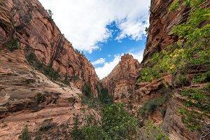 Rugged Zion National Park Landscape