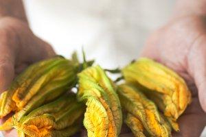 Pumpkin flowers in male hands
