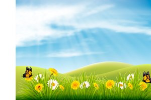 Spring nature landscape background
