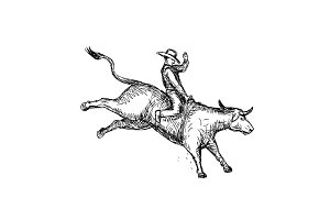 Bull Riding Rodeo Cowboy Drawing