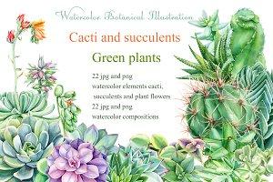 Watercolor Green plants
