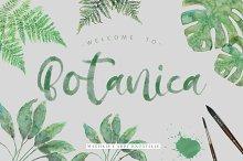 Botanica Regular & OpentypeSVG