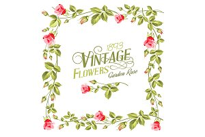 Vintage flower frame over white