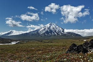 Mountain summer landscape on sunny