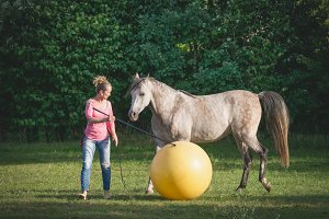 Horse playing ball with woman