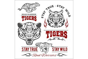 Tigers custom motors club t-shirt vector logo on white background. Wild animals - vector set.