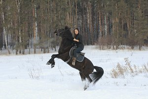 Young woman rids on black horse in snowy countryside - the steed stands on its hind legs