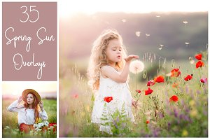 35 Dreamy Spring Sunlight Overlays