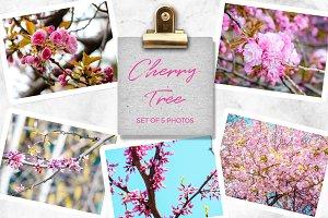 Cherry Tree Set