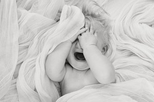 Baby Tears  ONE