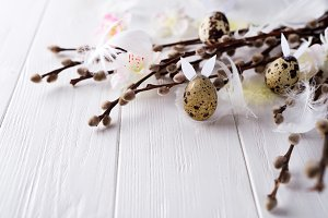 Easter quail eggs with hare ears and willow branch