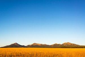 Bighorn Mountains Early in the Morni