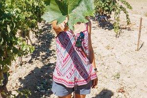Woman Holding a vine leaf