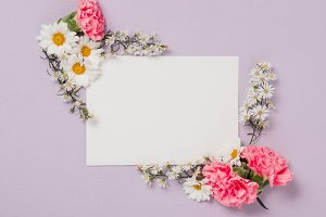 Violet Invitation with Pink Flowers