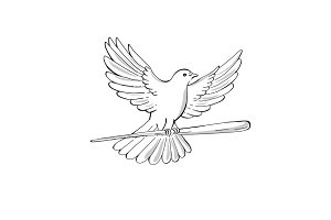 Pigeon or Dove Flying With Cane Draw
