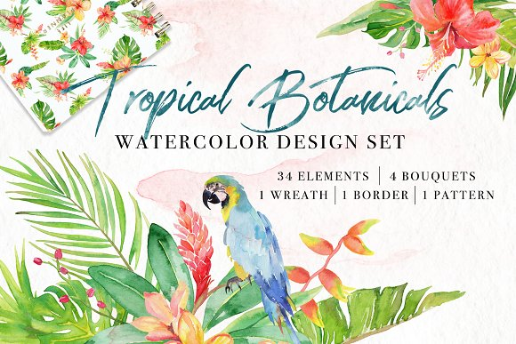 Floral Watercolor Bundle in Illustrations - product preview 1