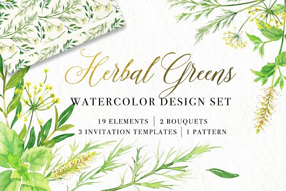 Floral Watercolor Bundle in Illustrations - product preview 2