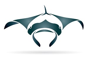 Vector of a stingray. Animal.