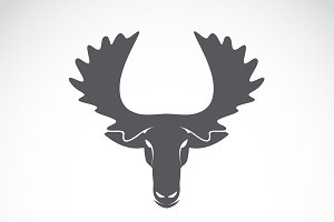 Vector of moose head. Animal.