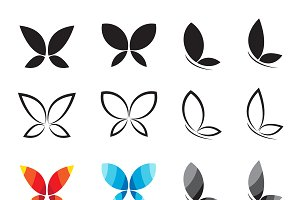 Vector group of butterfly. Insect.