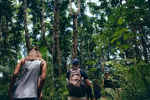 Group of travelers tropical forest