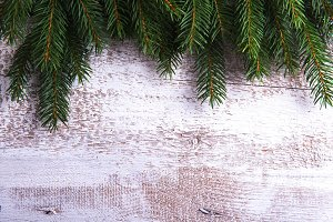 Tree branches on wooden background