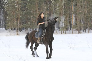 Young woman on top a bay horse in winter forest