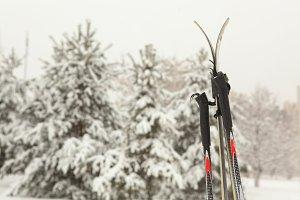 ski close up photo on winter snow cover park
