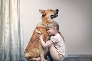 Kid with dog. little girl hugs a giant dog
