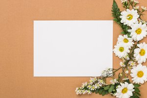 Invitation with White Flowers