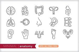 Minimal anatomy icons