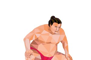 Japanese Sumo Wrestler Squat Low Pol