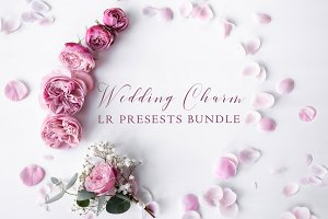 500+ Wedding Charm LR Presets Bundle