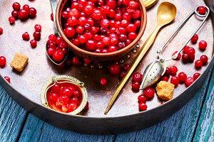 Ripe berries cranberries