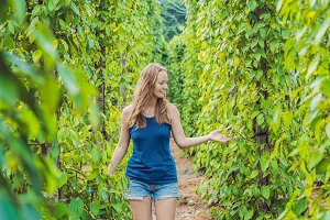Young woman on a black pepper farm in Vietnam, Phu Quoc