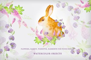 Watercolor flowers and the Bunny