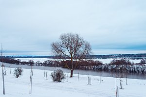 A tree in a clearing covered with snow. In distance the Oka River. Walking track in the snow.