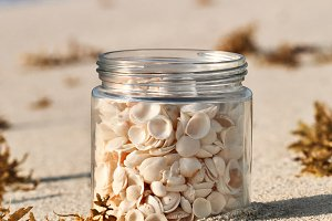 Shells In A Glass Jar At Sunrise