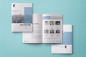 Business Brochure-Annual Report